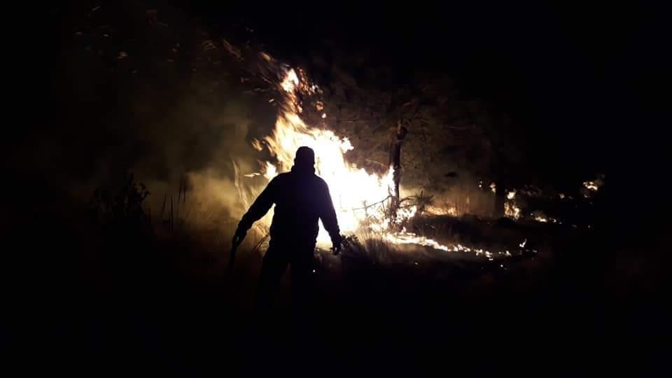 Incendio en la Malinche, nuestra olvidada montaña. Los brigadistas que la defienden