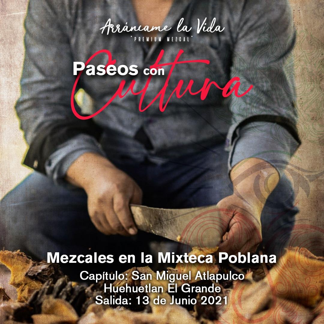 Paseos con Cultura:  Mezcales en la Mixteca Poblana.