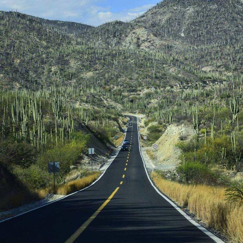 Se dicen y se ven tantas cosas raras en el desierto popoloca y mixteco