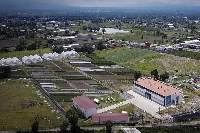 La BUAP en Los Reyes de Juárez: la dimensión estratégica de la universidad pública