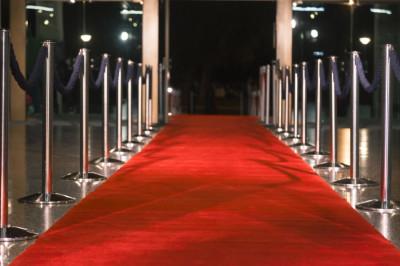 Preservar el error: alfombra roja a  la pandemia.