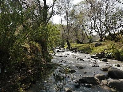 Rescatar al Atoyac: la mirada estratégica de Dale la Cara al Río Atoyac
