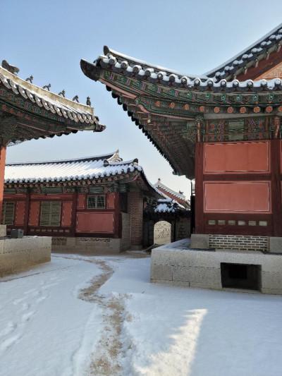 La nieve cae inocente en Seúl / Verónica González Laporte, escritora